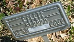 Lillie Area <i>Penny</i> Clough