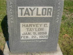 Harvey C Taylor