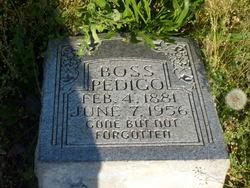 Boss Pedigo