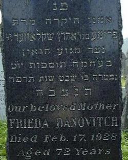 Freida <i>Schlover</i> Danovitch