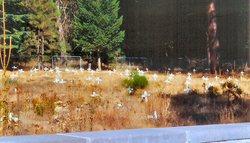 Plumas County Cemetery