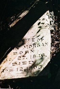 M.A. Morgan