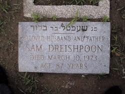 Sam Dreishpoon