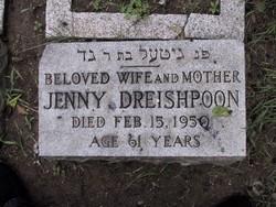 Jenny <i>Augenblick</i> Dreishpoon