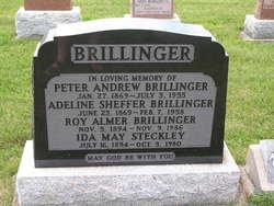 Adeline <i>Sheffer</i> Brillinger