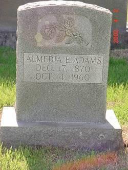 Almedia E Adams