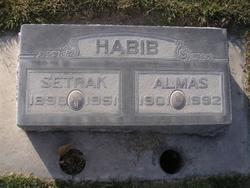 Almas Habib