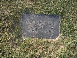 George Habib