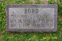 Tarlton Bond