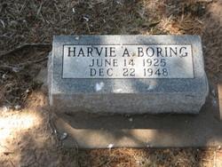 Harvie Alva Boring