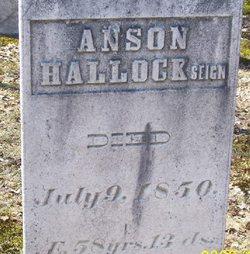 Anson Hallock