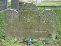 Mary Anne Longstreet