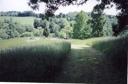 Ferrell Cemetery (Samuel)
