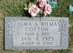 Alma Cotton
