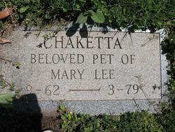 Chaketta