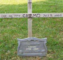 Gizmo Stamper