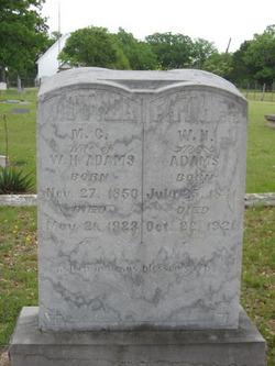 William Henderson Adams