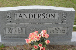 G W Anderson