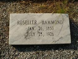 Roseller Amanda Clemintine <i>Crawley</i> Hammond
