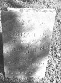 Sarah J Adkins