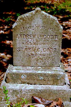 Mary Ann Cobb