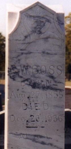 George Washington Boss