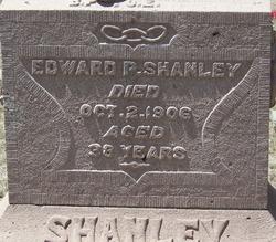 Edward P Shanley