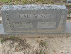 Nancy Ann Antwine