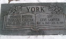 Hannah <i>Carter</i> York