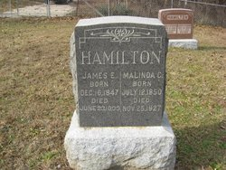 James Edward Hamilton
