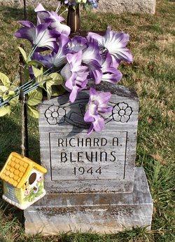Richard A. Blevins