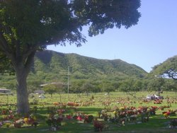 Diamond Head Memorial Park