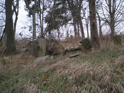 Angelo Lewis Buckhorn Cemetery