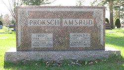 Amanda Amsrud