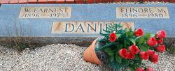 Elinore M Daniel
