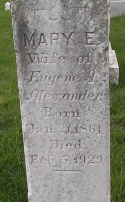Mary Elizabeth <i>Tracey</i> Alexander