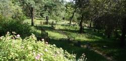 Shasta Union Cemetery