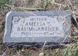 Amelia S Baumgartner
