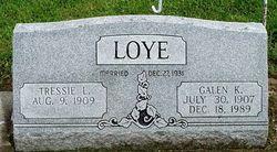 Galen K. Loye