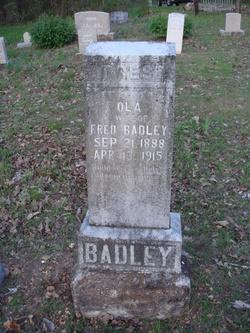 Olla <i>Maclamara</i> Badley