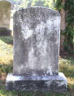 George C. Rice