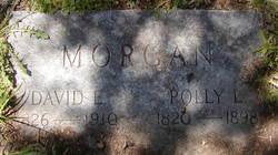 David E. Morgan