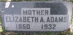 Elizabeth Ann <i>Sugden</i> Adams