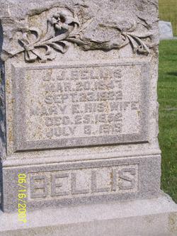 Mary E Polly <i>Tarwater</i> Bellis