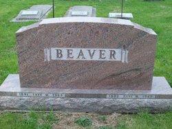 Levi M Beaver
