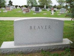 Onno J Beaver