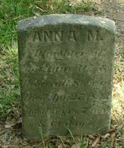 Anna Stewart