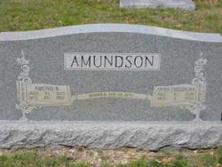 Amund B Amundson