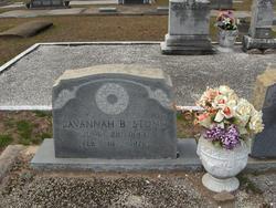 Savannah B <i>Brown</i> Stone