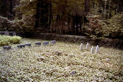 Harriton Cemetery